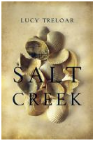 Salt Creek book cover